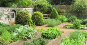 The Herbal Garden, Petersfield Physic Garden